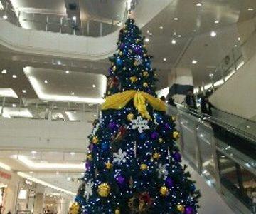 浦和美園「イルミネーション&クリスマスツリー」5選
