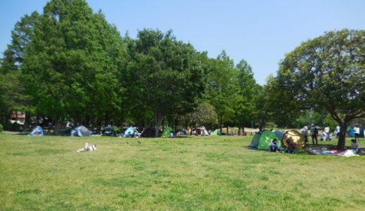 さいたま市 大崎公園|子育て世代が1度は訪れる大人気スポット