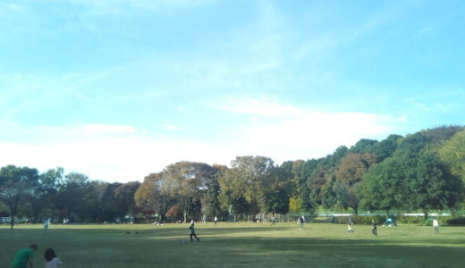 さいたま市「見沼自然公園」見沼用水路を作った男とは?四季折々の風景を楽しめる