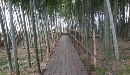 東浦和の公園「見沼通船堀公園」|世界有数の運河