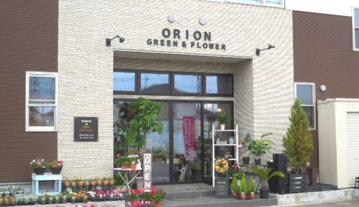 浦和美園の花屋「フラワーショップ オリオン」|観葉植物レンタルとフラワーギフトができます
