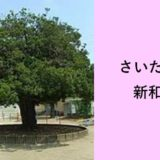 さいたま市立新和小学校