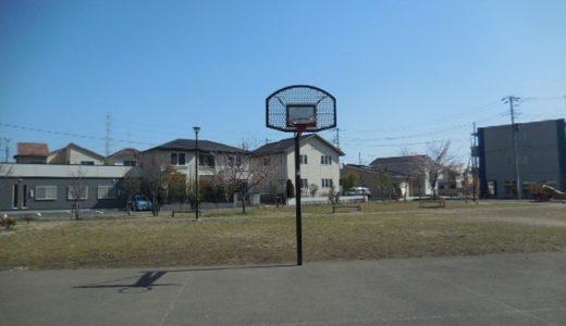 浦和美園の公園「美園六丁目第2公園」バスケットゴールのある公園