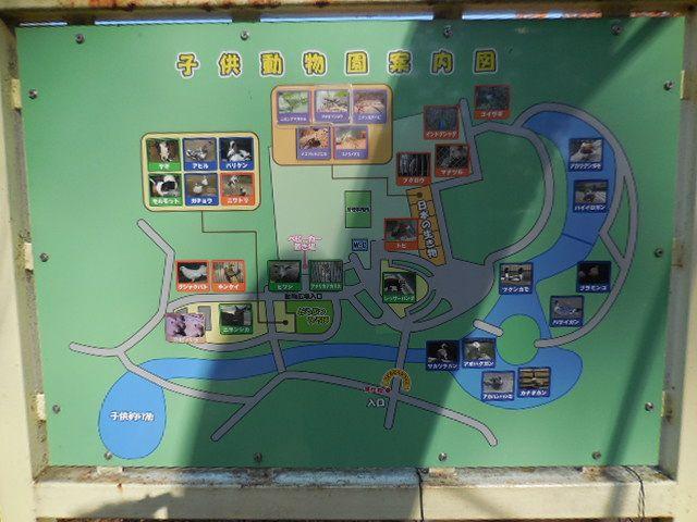 大崎公園内 こども動物園