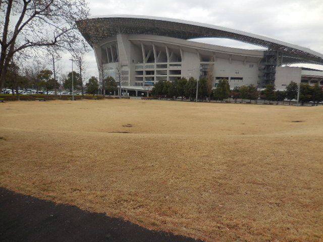 埼玉スタジアム2002公園・ もみの木広場