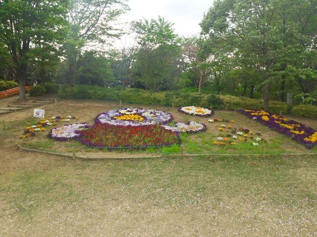 コバトン 花壇