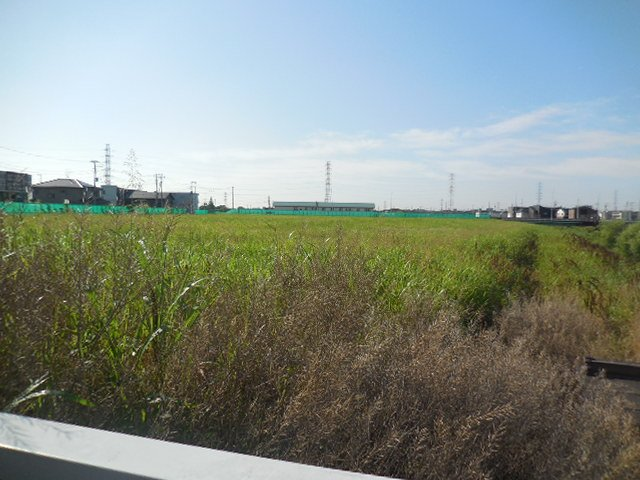 浦和美園4丁目公園の隣 公園建設予定