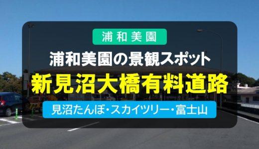 新見沼大橋有料道路|見沼田んぼ・東京スカイツリー・富士山を見ながら走る浦和美園の景観スポット
